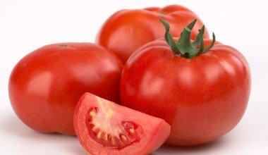 Tomatoesonvine2-380x220